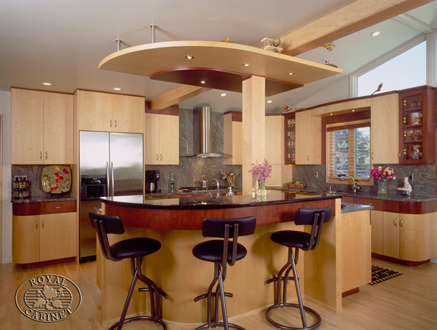 Contemporary kitchens kitchen design gallery for Modern kitchen designs gallery