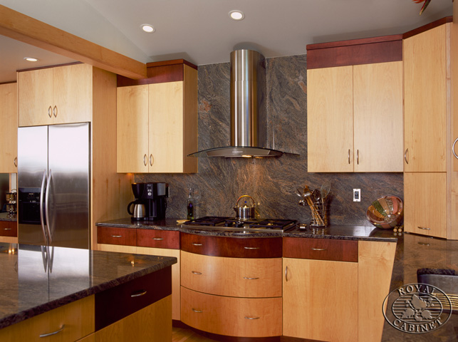 contemporary kitchens kitchen design gallery contemporary style